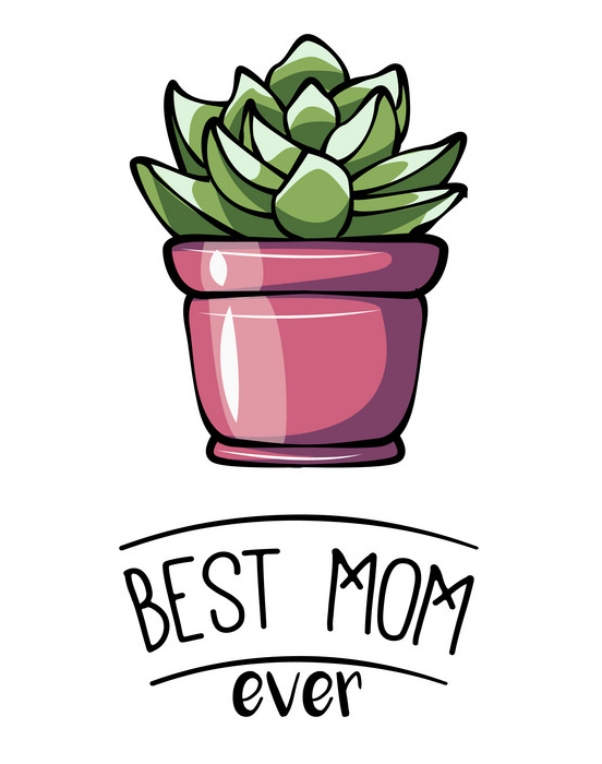 Happy mother s day greeting card with succulent. Vector illustration.